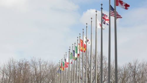 What are the advantages of the International protection of patents?